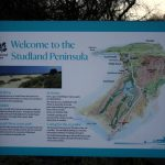 29/01/2017 – Studland to Swanage