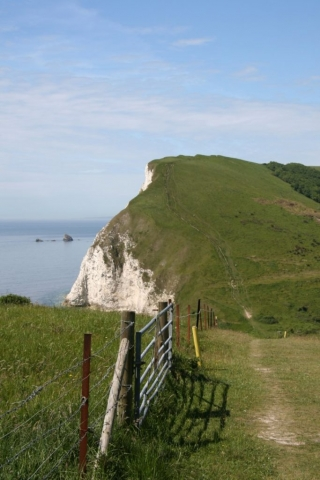 Steep path up a cliff